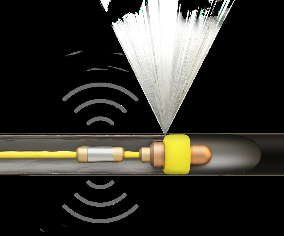 Ferret leak detection technology