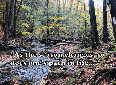 """""""Season of Change"""""""