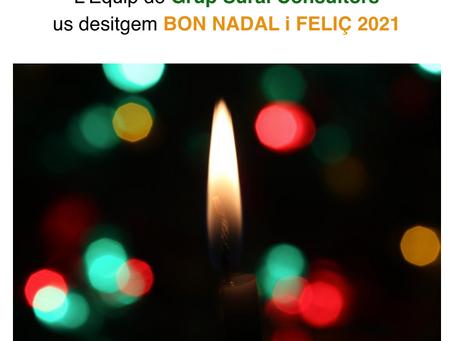 BON NADAL I FELIÇ 2021 !