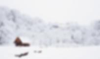 SnowCottage_Blur.png