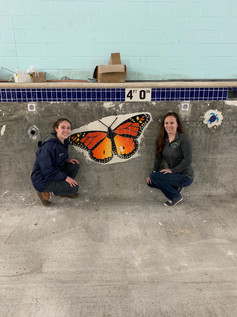 The butterfly is in!