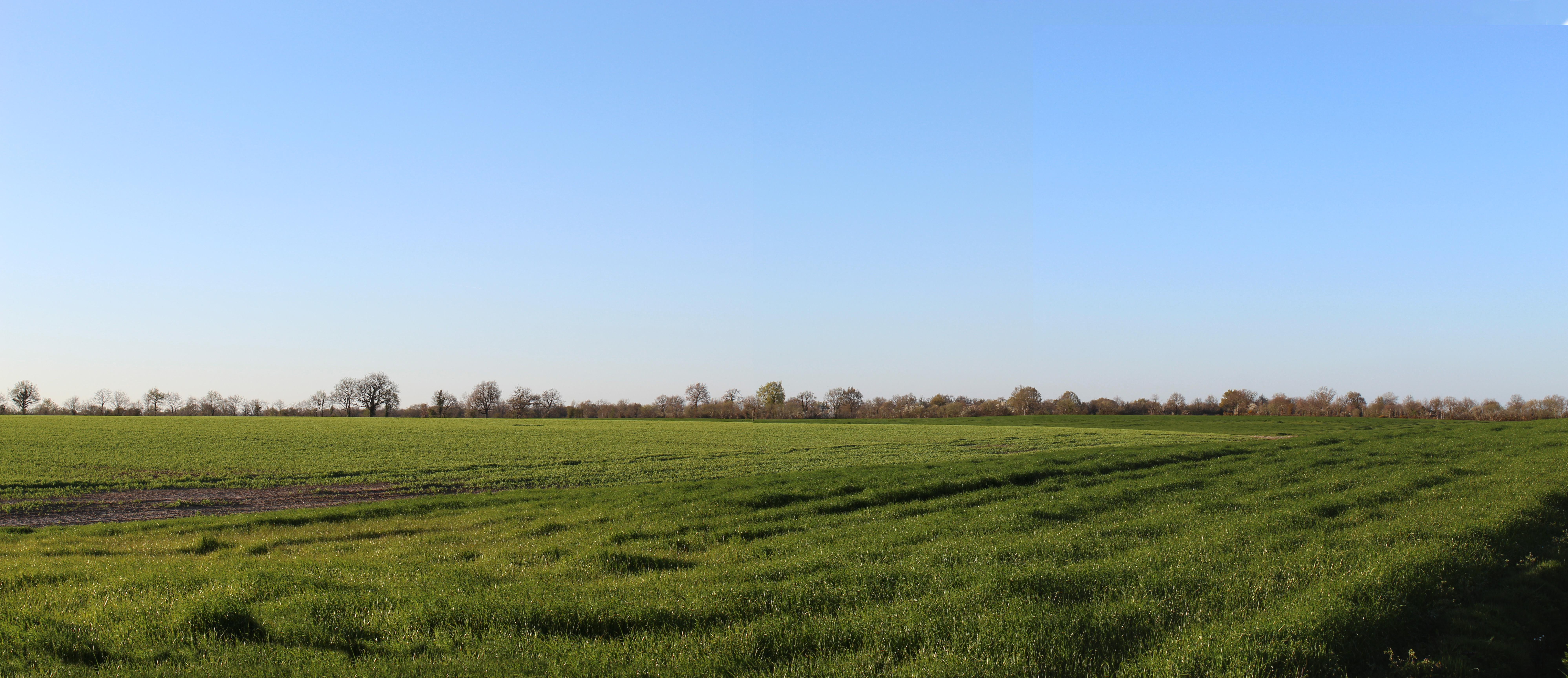 Panorama 5-56°