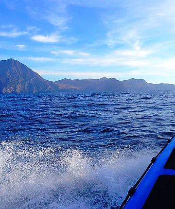 Wild Atlantic Sea Safari Cruising of the Coast of Achill Island, Mayo, on the Wild Atlantic Way :)