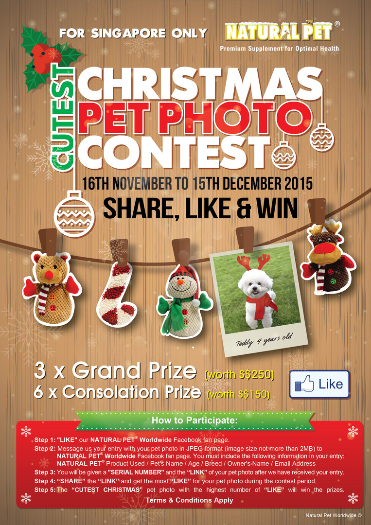 Natural Pet Cutest Chirstmas Photo Contest 2015