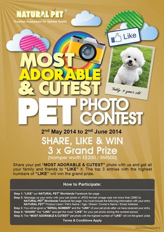 Natural Pet | Most Adorable & Cutest Pet Photo Contest 2014