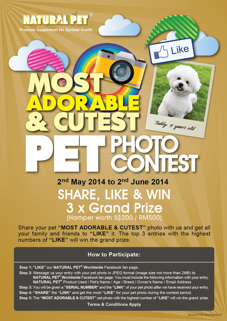 Natural Pet | Most Adorable & Cutest Pet Photo Contest 2014