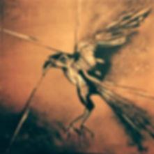 Krähe Acryl auf Leinwand/ 50x50cm