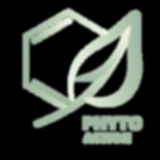 Logo de Phyto Action un OBNL en phytotechnologie; Phytoremediation, infrastructure naturelle,