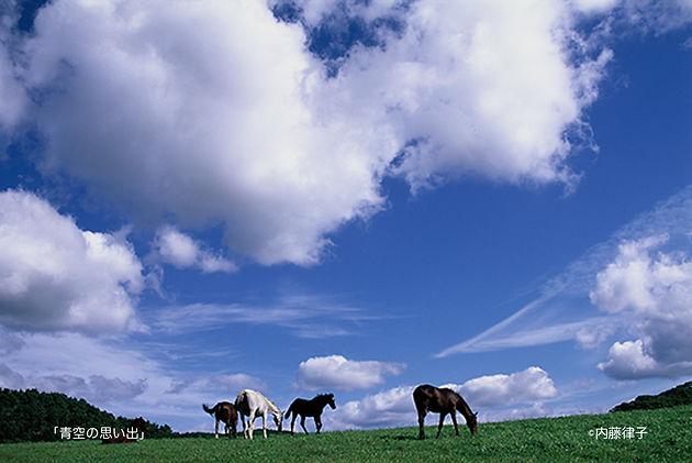 8月「青空の思い出」2001/10/4本桐_ のコピー.jpg