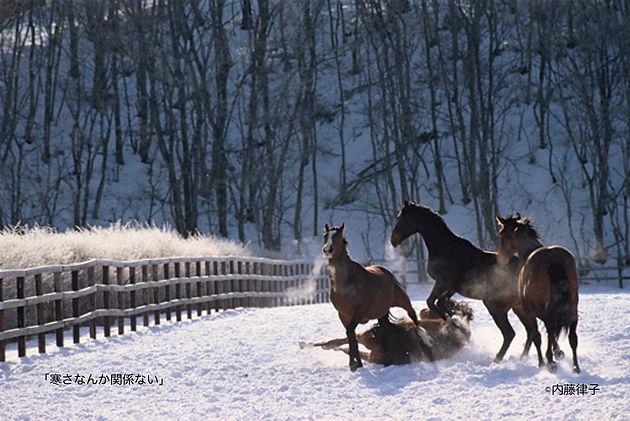 12月「寒さなんか関係ない」1988/2/25荻伏__03 のコピー.jpg