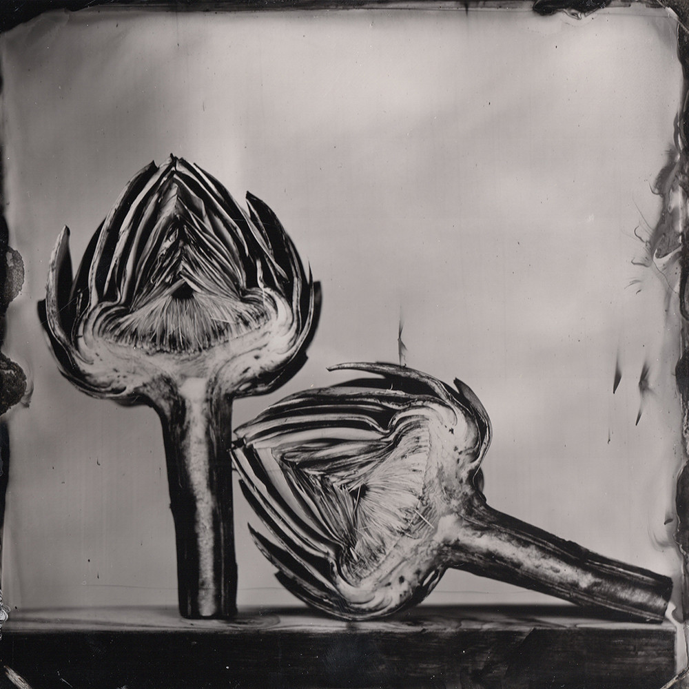 Nature morte collodion 7