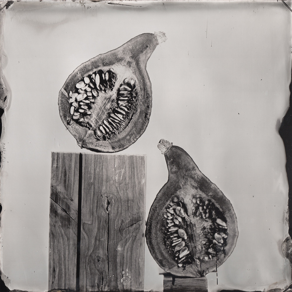 Nature morte collodion 3