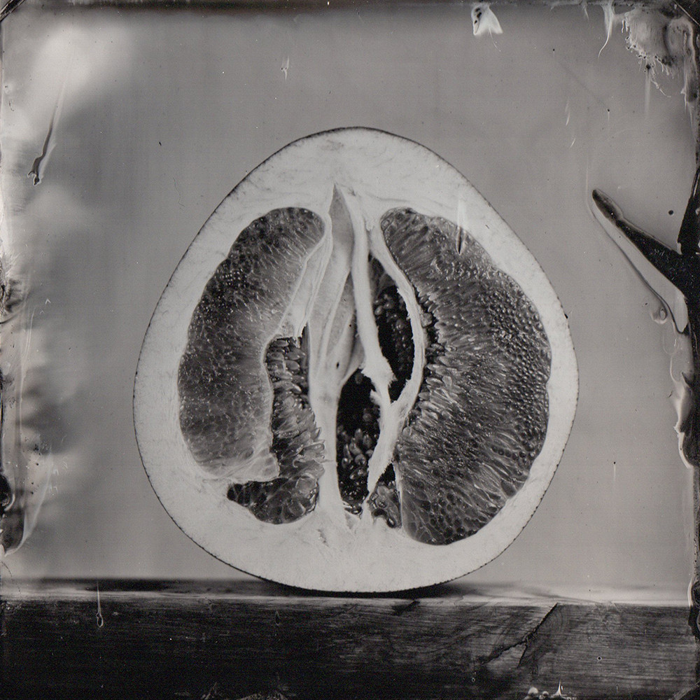 Nature morte collodion 2