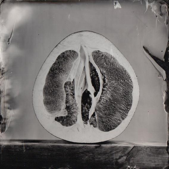 Nature morte collodion 2