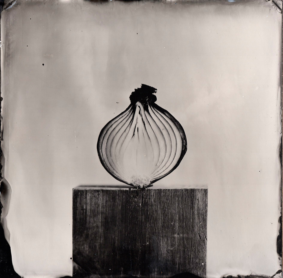 Nature morte collodion 10