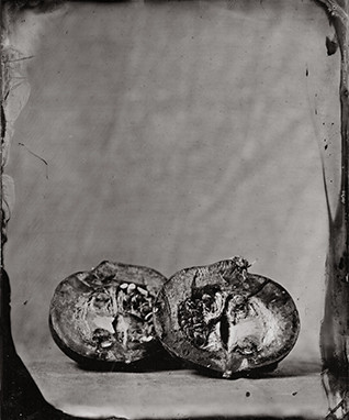 Nature morte collodion 4