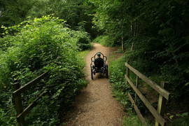 Colchester BOMA 7, High Woods Country Park