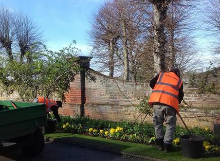 Springtime 2020 in Castle Park Colchester