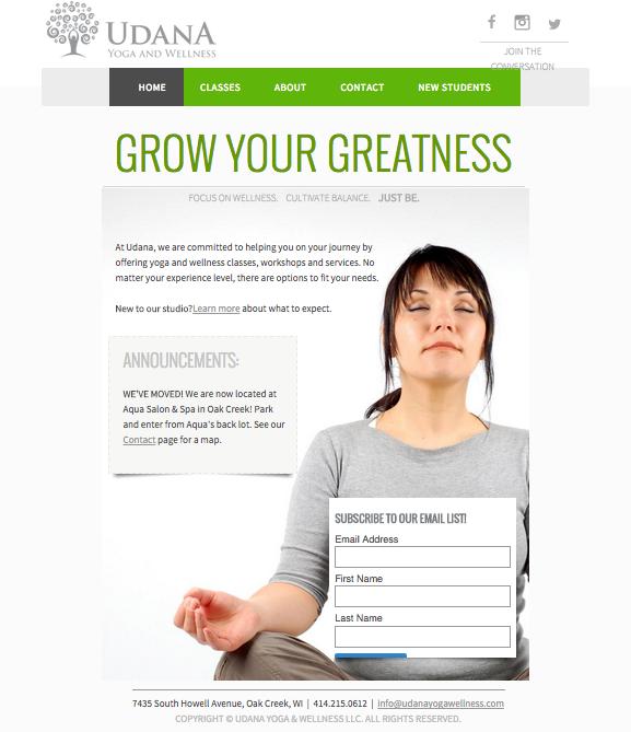 Website Design - Udana