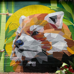 Red Panda Mural