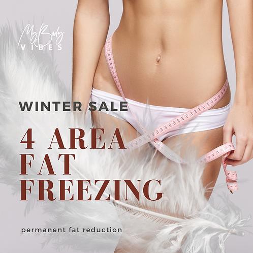 Fat Freezing Treatment x 4 sessions