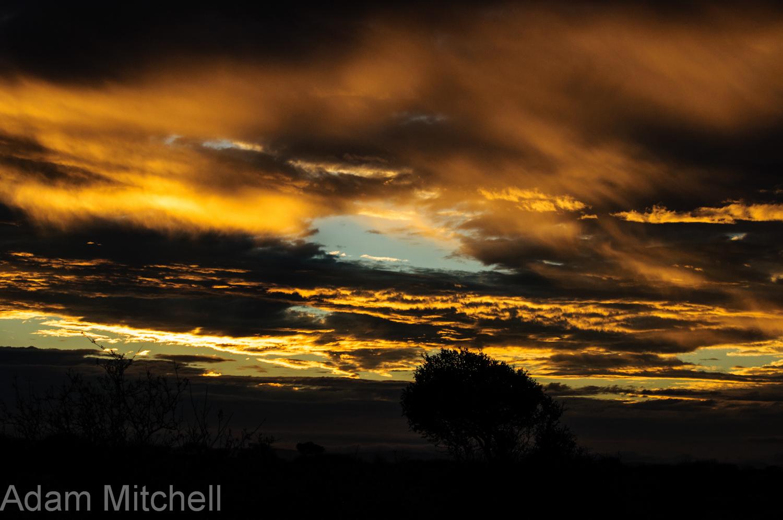 Kalahari dawn