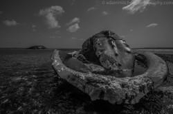 Stranded humpbacks, Aldabra
