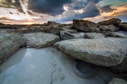 Spotted moray, Aldabra