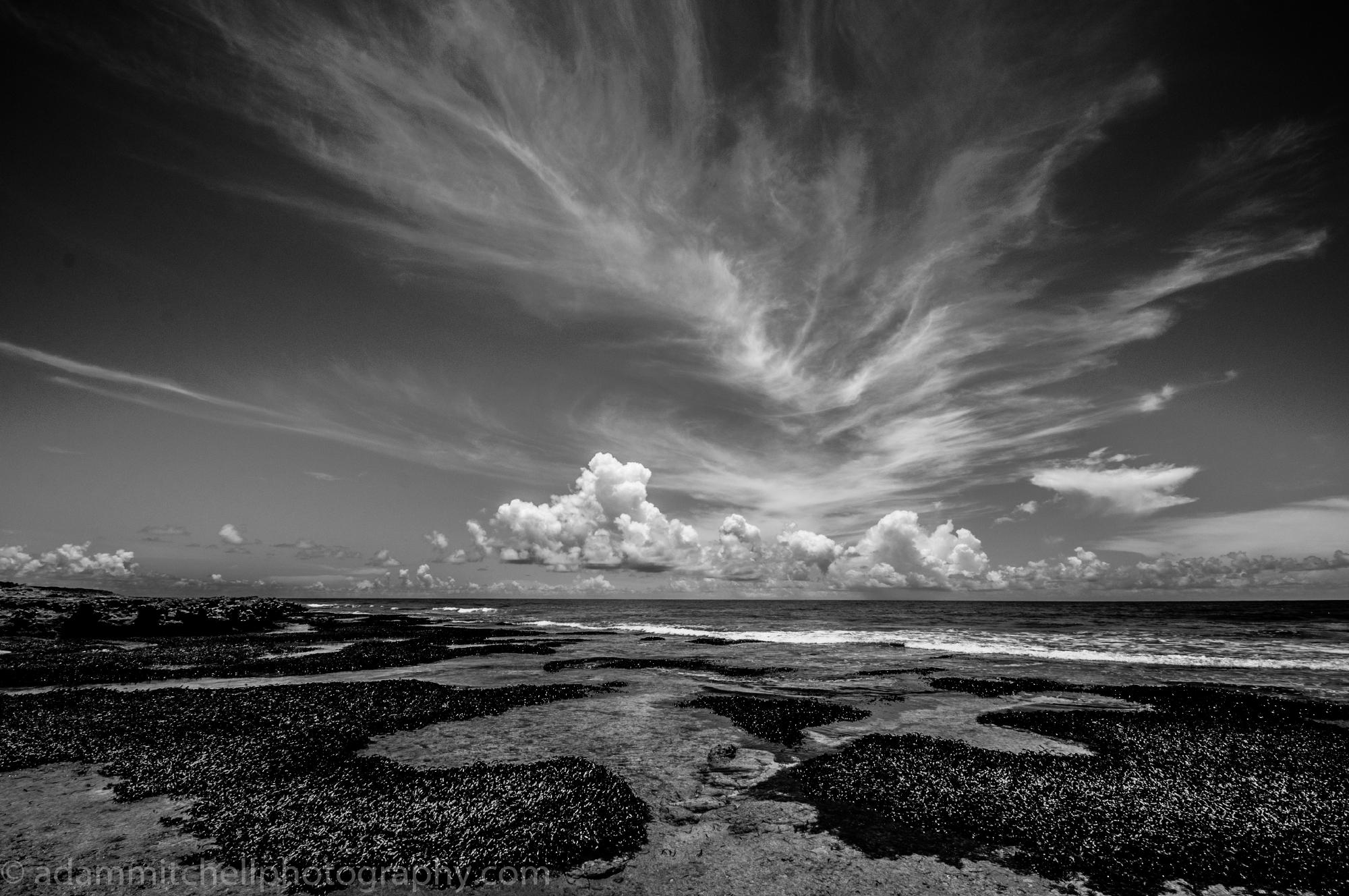 Cinq Cases, Aldabra