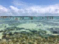 maragogi_brasil_piscinasbarragrande_1.JP