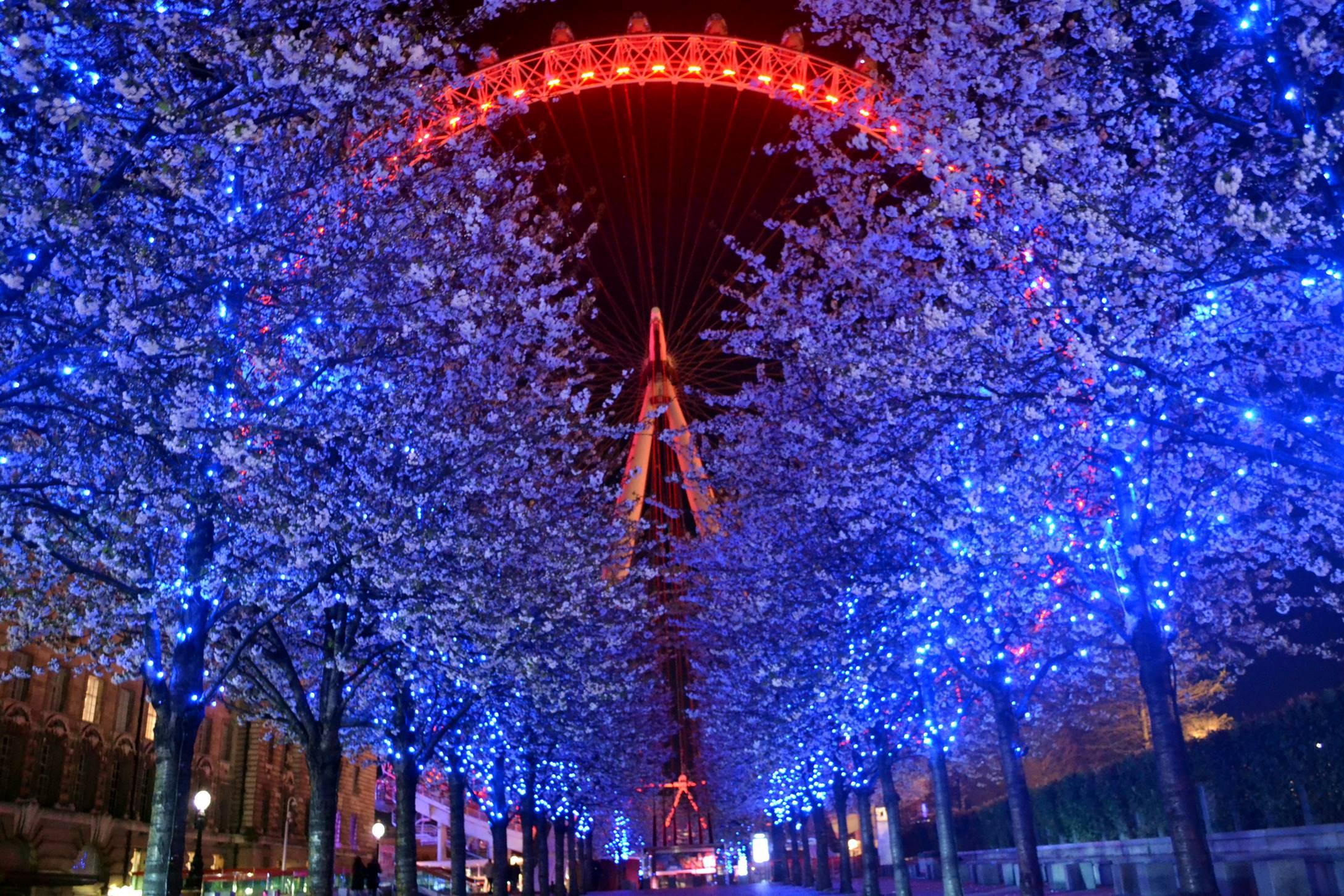 londres_inglaterra_londoneye_2