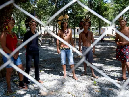 En Amazonie, la grande peur des indigènes
