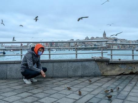 """Nous sommes tous, oiseaux et humains, en fait « libérés »"""""""