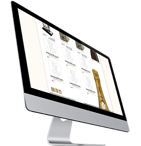 Professionnel Commerce en ligne