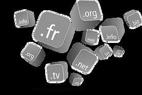 nom de domaine,réservation,veille,transfert,sécurité,extensions,messagerie personnalisée,redirection,dns