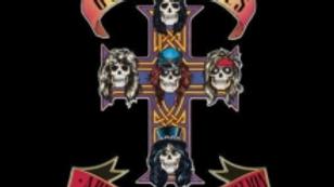 Guns N Roses/Appetite For Destruction