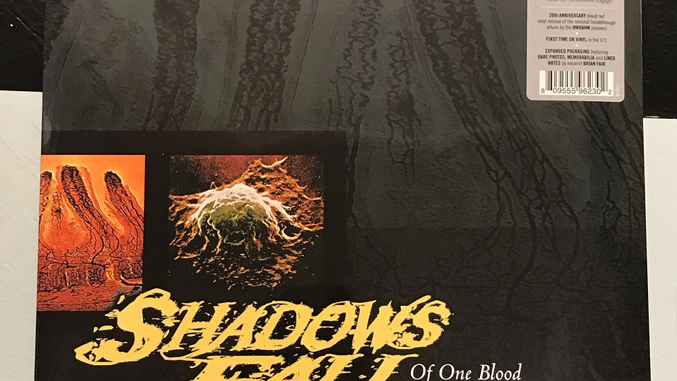 Shadows Fall Of Our Blood