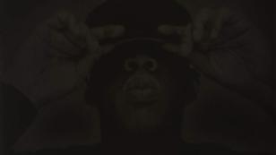 Jay-Z/Black Album