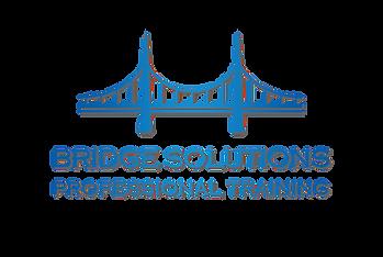 BridgeSolutionsNovo2transp.png