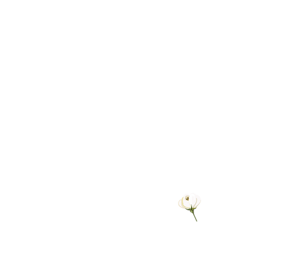 FloralImages_2smallflower.png