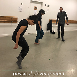 physical development protocols 500x500.p