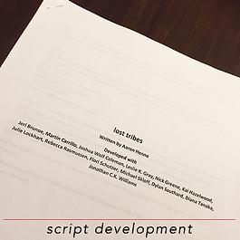 script development 500x500.png