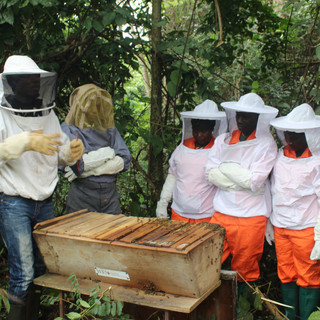 Beekeeping Field School  (3).JPG