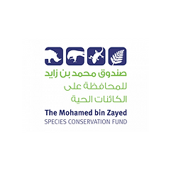 MBZ Website Logo.png