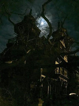 Castle Rogue's Manor at Night