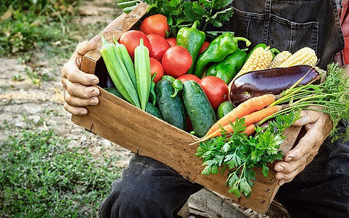 farmer-holding-csa-box-1024x640.jpg