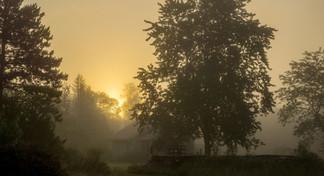 Studio in fog  16 August 2017