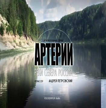 Постер   Артерии