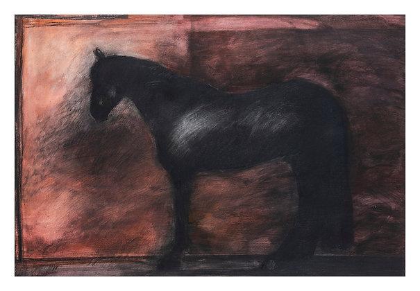 Marie-Amélie Germain - Cheval 3 - 88,5x120 cm, encadré
