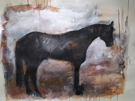 Marie-Amélie Germain - Cheval 2 - 57x76 cm, encadré